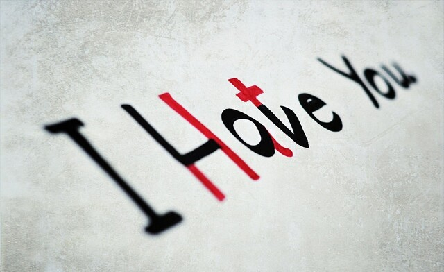 I Hate You, I Love You