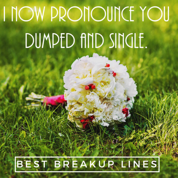 I now pronounce you dumped and single. You may now kiss my ass.